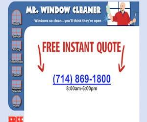Mr. Window Cleaner